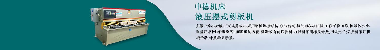 安徽中德w88网站手机版股份有限公司